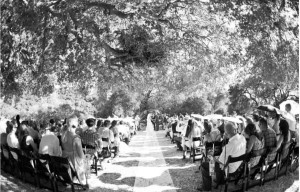 Parker Ranch Wedding DJ
